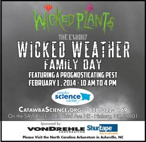 Wicked Weather Family Day